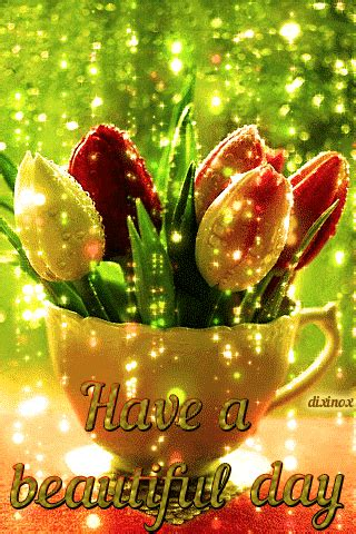 tulip   beautiful day gif pictures