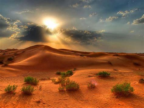 Desert Landscape Summer Sunset In The Desert Red Sand ...