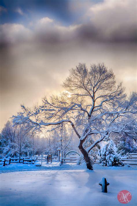 Winter Wonderland MiKSMedia Photography