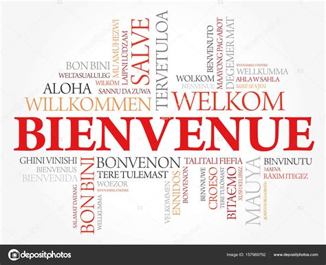 Bienvenue (Welcome in French) — Vector de stock © dizanna ...
