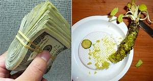 real wasabi is one of the most expensive crops on the