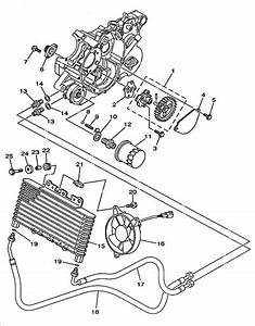 Massimo 500 Utv Wiring Diagram  Diagram  Wiring Diagram Images