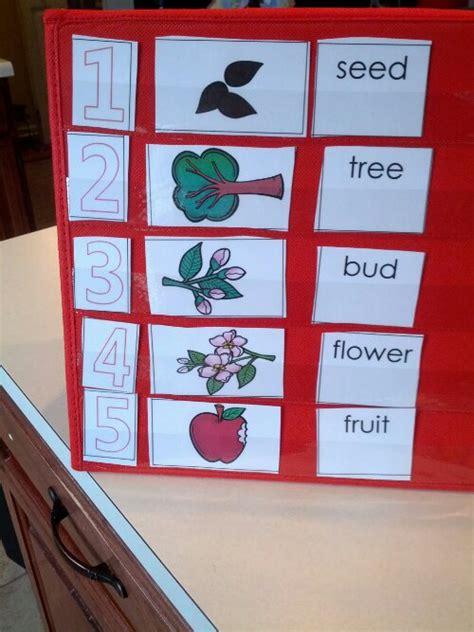 apple life cycle packet   printable teaching