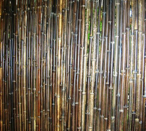 bamboo screen bamboo australia 187 bamboo fences screens trellises