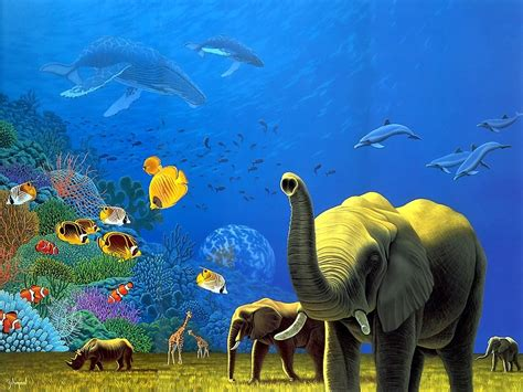 3d Animal Wallpaper 3d Fish Wallpaper - welcome to wallpapers world animals 3d wallpapers