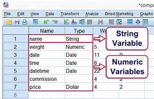 Spss Variable Berechnen : spss variable types and formats quick tutorial ~ Themetempest.com Abrechnung