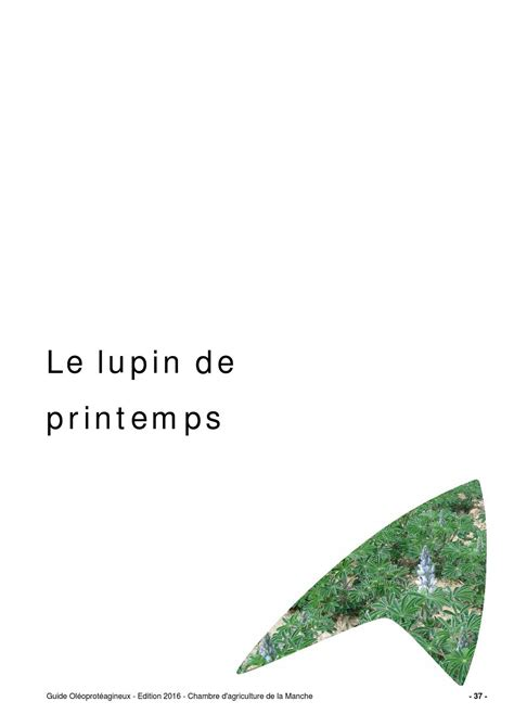 chambre agriculture 37 guide lupin de printemps 2015 by chambre d 39 agriculture