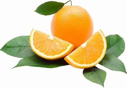Orange Transparent Oranges Fruit Juice Fruits Sweet