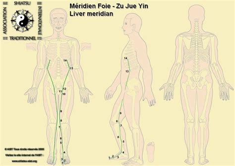 meridien du poumon acupuncture les points et m 233 ridiens d acupuncture un point fort en m 233 decine un point faible en sport