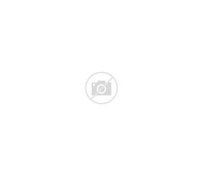 Jackets Columbus Wikipedia Logos Hockey Ohio Mugs