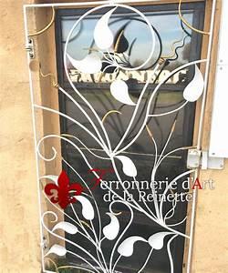 Grille Porte D Entrée : grille pour porte d 39 entr e en fer forg aix en provence ~ Melissatoandfro.com Idées de Décoration