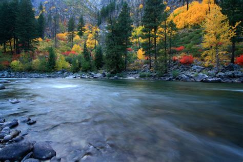 fall colors, wenatchee river, tumwater canyon, wenatchee n ...