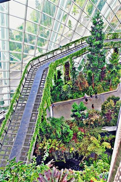 Cloud Bridge Forest Garden Gardens Secret Bay