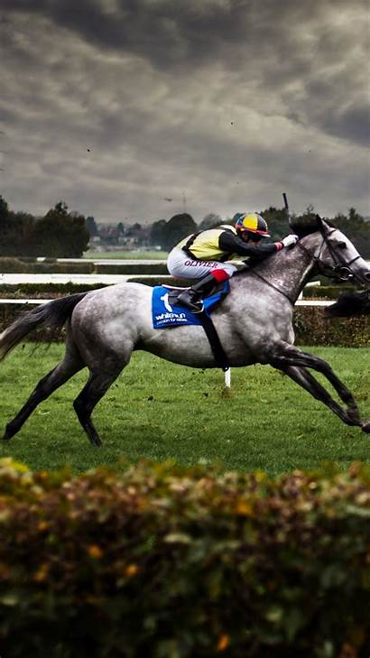 Horse Racing Wallpapers Perfect Racehorse Photographer Enthusiasts
