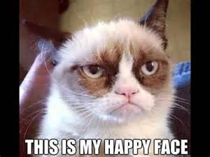 Try Not to Laugh Grumpy Cat