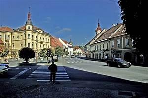 Tic Slovenska Bistrica