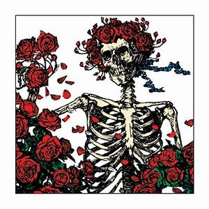 The Grateful Dead Skeleton And Roses Button