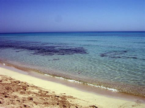 Море Berefluzita