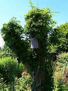 Spitzmäuse Im Garten : vielf ltige strukturen im garten deutschland summt ~ Lizthompson.info Haus und Dekorationen