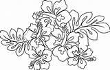 Hawaiian Coloring Flower Pages Printable Lei Flowers Drawing Sheets Leaf Blank Luau Hawaii Drawings Leaves Themed Getdrawings Getcolorings Taro Paintingvalley sketch template