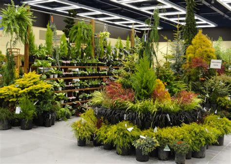 Garten Pflanzen Shop by Plant Center Displays For Retail And I Like Their