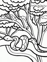 Coloring Snake Printable Pages sketch template