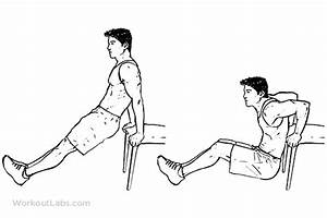 Chair    Bench Tricep Dips