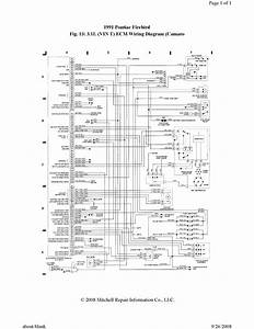 1991 Pontiac Firebird Ecu Wiring Diagram Needed