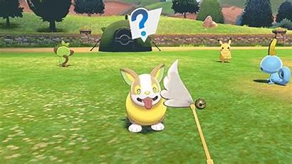 Pokemon Sword Shield Reveal Camping Creators Expect