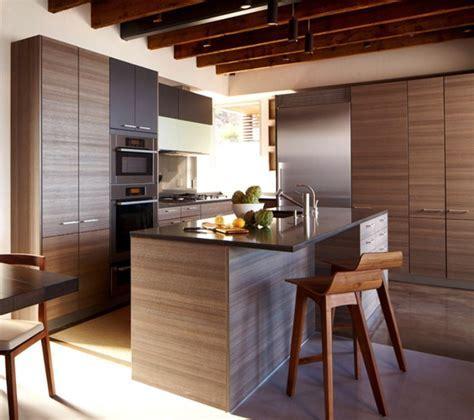 Horizontal Grain Kitchen Cabinets   Modern Kitchen Design