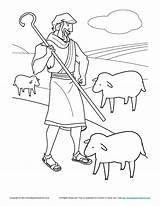 Shepherd Coloring Bible Jesus Flock Sheep Lost Miracles Shepherds Sheets David Children Activities Clipart Tends Activity Ruth Special Colouring Printable sketch template