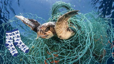 aus fischernetzen diese socken verkleinern den