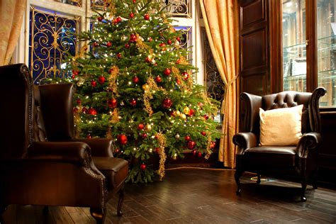 the terms best live christmas trees for decorating decorating mistakes reader s digest