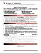 Executive Resume Samples Professional Resume Samples Resumes By Free CV Sample Senior Executive Resume Sample IT Resume Template Executive Level Resume Sample Director Level Resume Examples