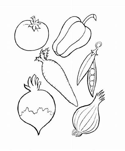 Coloring Vegetable Garden Pages Printable Getcolorings