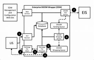 Figure 3 Integration Of Digital Gross Pathology Images For