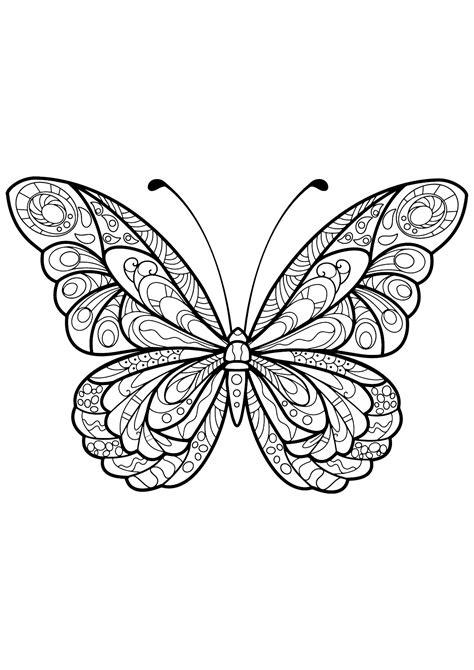 disegni da colorare per adulti farfalle disegni di farfalle