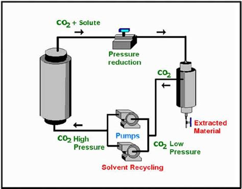 extraction cuisine co2 extraction and ethanol extraction for the hemp and