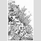 Anatomical Heart Tattoo Black And White | 2144 x 3337 jpeg 1447kB