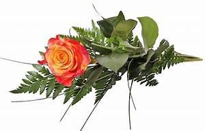 Gelb Rote Rosen Bedeutung : einzelne rose 1 gelb orangefarbene rose ich denk 39 an dich p178 blumenversand pflanzen shop ~ Whattoseeinmadrid.com Haus und Dekorationen