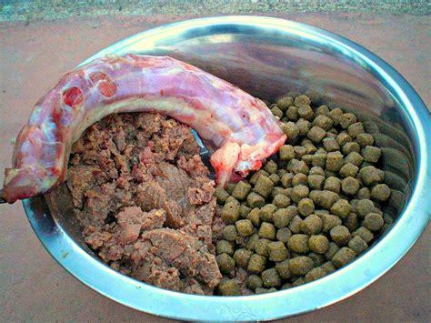 dog food wikipedia