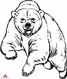 Grizzly bear free drawing patterns to trace in 2019 | Bear ...