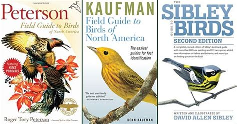 what s the best book or field guide for bird
