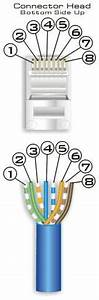 Cat 5 Wiring Diagram : power over ethernet buffalo g54 wifi antenna m0mcx ~ A.2002-acura-tl-radio.info Haus und Dekorationen