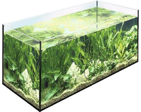 aquarium eheim 150 x 50 x 50 cm 375 liter bei hornbach kaufen