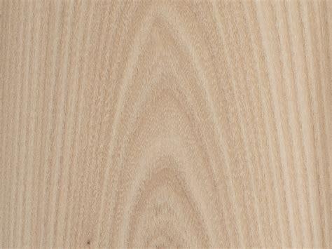 bureau d 騁ude construction feuille placage bois brut bilegno orme d 39 amérique ramageux n127 250x125 11 10mm