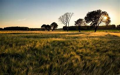 Barley Field Macbook Wallpapers Inch Retina Allmacwallpaper