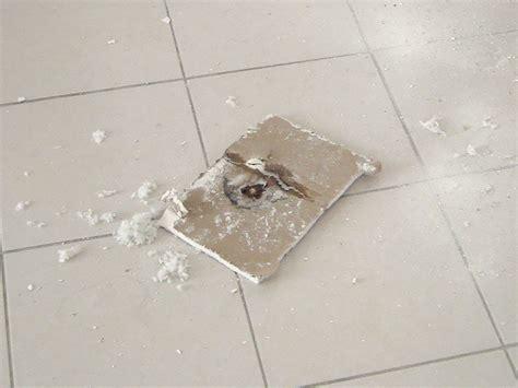 fuite d eau au plafond fuite d eau plafond 28 images comment arr 234 ter une fuite d eau au plafond article