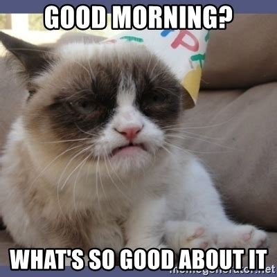 Grumpy Cat Good Morning Meme - grumpy cat good morning america youtube