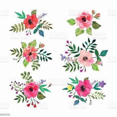 Vector Floral Flowers Watercolor Leaves Flower Illustration